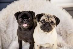 BEENA&LOLA9